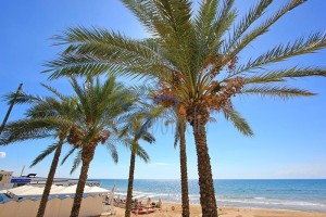 beach, Sicily, Holiday, Estevillas , villa rental
