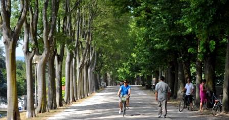 Biking on the Lucca Walls