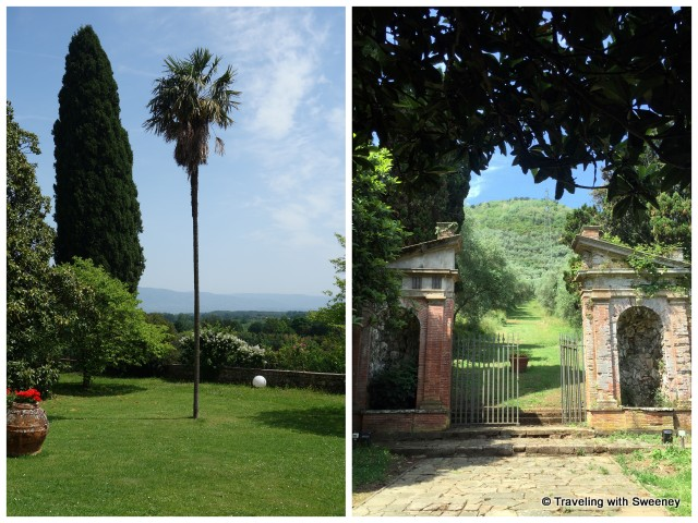 Palm tree on front lawn and stone gate in back on the grounds of Villa Buonvisi