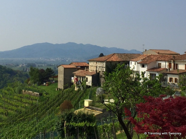 In the Cartizze hills along the Prosecco Road